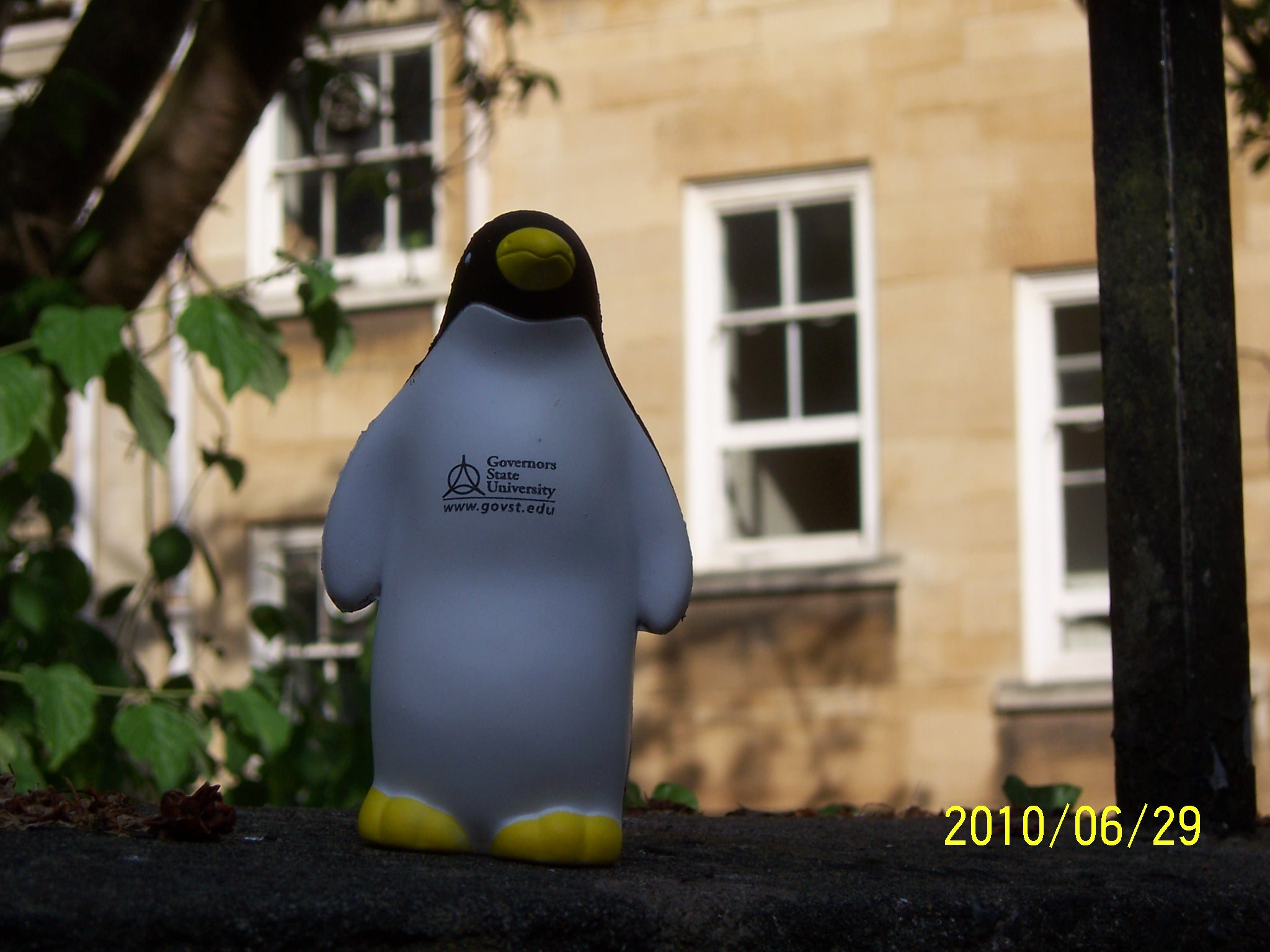 PenguinBristol